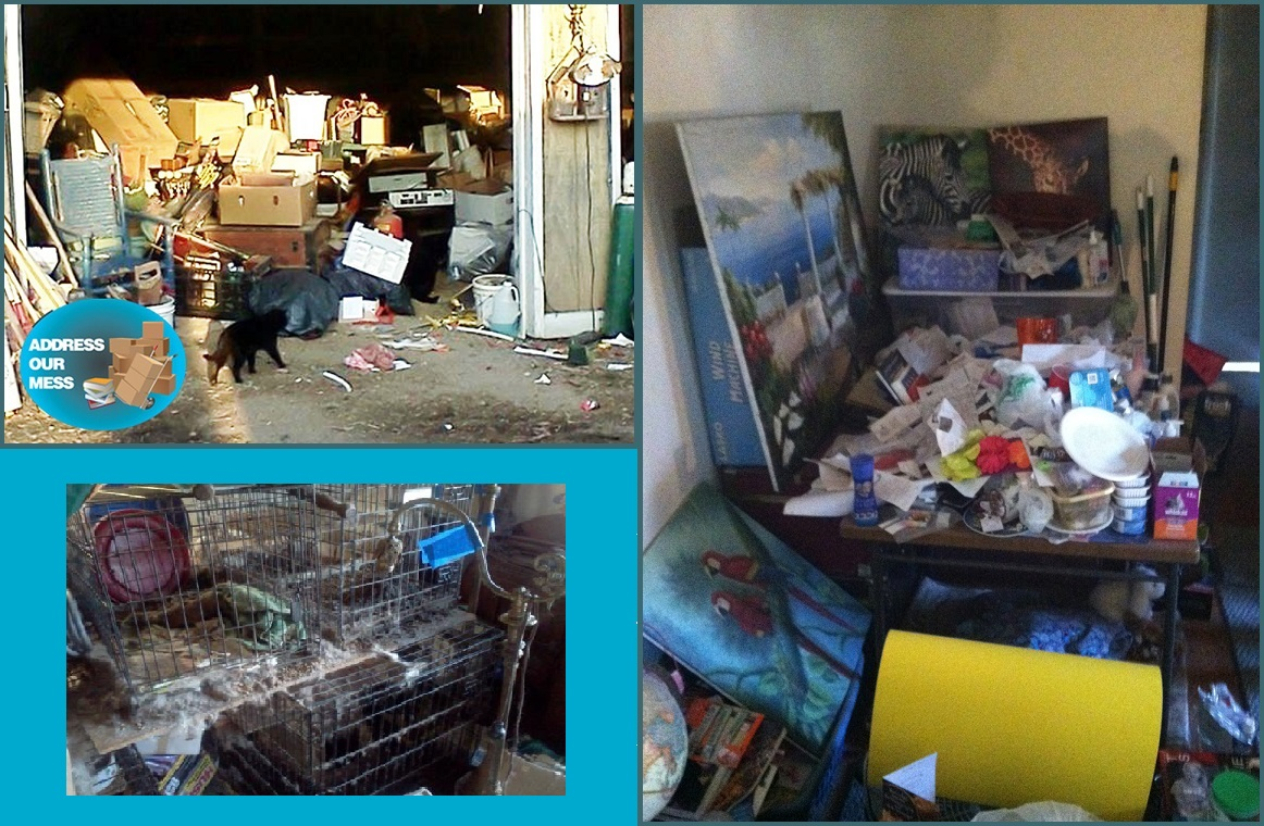 Animal Hoarders Clean Up